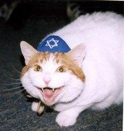 Kosherhuff.jpg