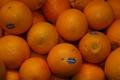 Appelsiner.jpg
