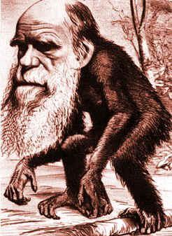 Atbash-charles-darwin-ape.jpg