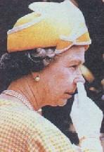 Arquivo:Queen picking.jpg