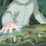 Mushi Yose no Jutsu.PNG