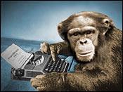 Tiedosto:Typing monkey.jpg
