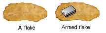 Cornflake differences.png