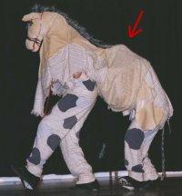 Pantomime horse.jpg