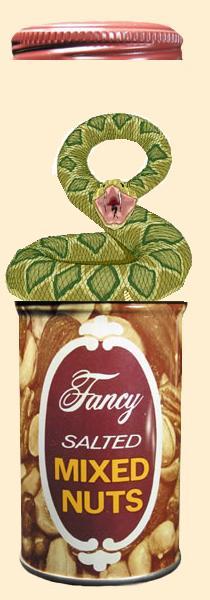 Fancynuts2.JPG