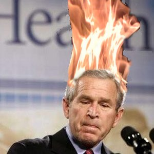 Bush Burning.jpg