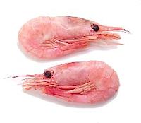 File:Canalshrimp sidebar.png