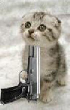 Evil Cats With Guns