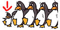 Dancing Penguins.jpg