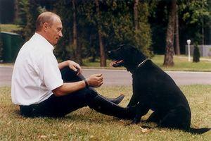 Vladimir Putin and Koni-4.jpg