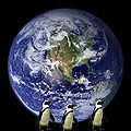 Earth With Penguins.jpg