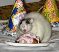 Fat-rat.jpg