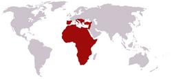 Sem predadores naturais,as girafas dominaram o continente africano e continuaram sua conquista até a Itália, Espanha, Portugal e Creta.