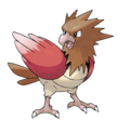 021Spearow2.png