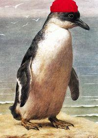 Balıkçılık buzulkuşlarında yaygın bir meslektir.