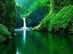 Cachoeira Dourada.jpg