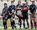 Soccerpansies.jpg