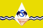 Bandeira radf Santa Maria.jpg