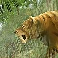 Sabretoothedcat.jpg