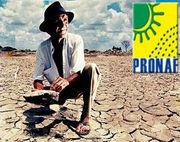 Logo pronaf com seca do agricultor desgostoso da vida.jpg
