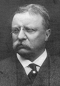 Roosevelt T.jpg