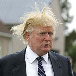 Donald Trump hair.jpg