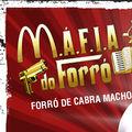 Mafia do Forró.jpg
