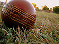 Cricket match in progress.jpg