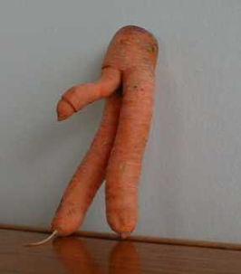 Een prachtexemplaar van de wortel