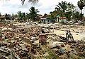 Tsunami disaster.jpg