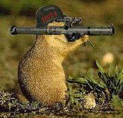 Squirrel bazooka.jpg