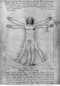 İlk model insanlar 4 kol ve bacaklıydı, gelen yamalarla birlikte 2ye düşürüldü.