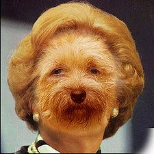 ThatcherMutt.jpg