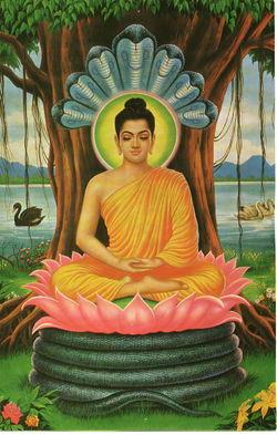 Gautama Buddha.jpg