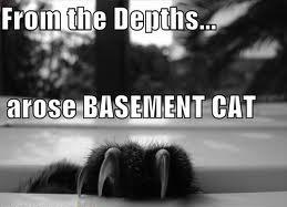 Basement Cat Souls
