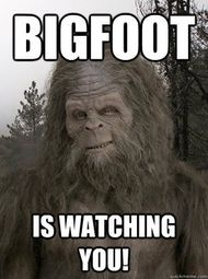 Bigfoot is watching you!.jpg