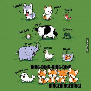 Fala dos raposos.jpg