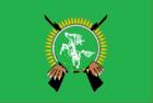 Bandeira de Baltar