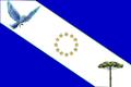 Bandeira do Parana.png