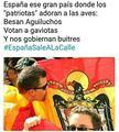 Españolista e as aves.jpg
