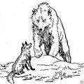 Raposo e oso.jpg