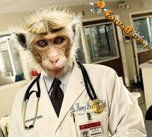 Doutor.jpg