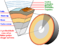 Earth crust cutaway.png