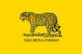 Bandeira libertaria do Brasil.jpg