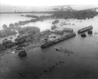 Watersnoodramp 1953.jpg