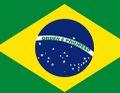 Bandeira Brasileira castrapada.jpg