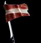Bandeira de A Cañiza