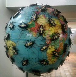 Terra bugada.jpg