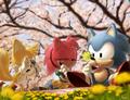 Sonic vacacións na primavera.png