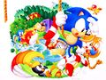 Sonic vacacións.jpg